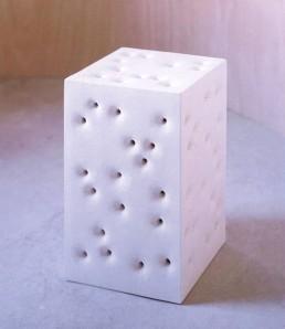 skin bones block c